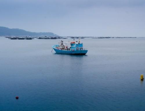 Limestone Coast Fishermen's Co-operative